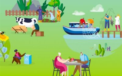 Horizon Europe: pubblicato il Work Programme 2021-2022